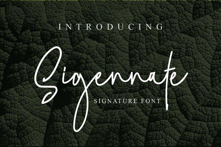 Sigennate Signature Font