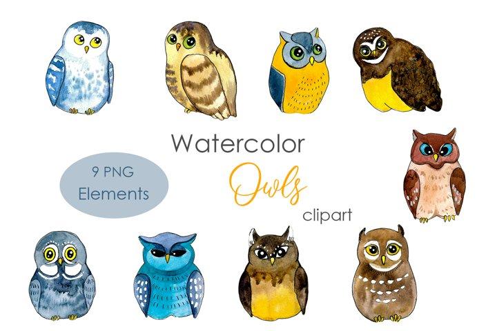 Watercolor Owls Clipart. Watercolor clipart