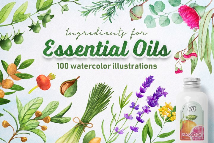 Essential Oils. Watercolor.