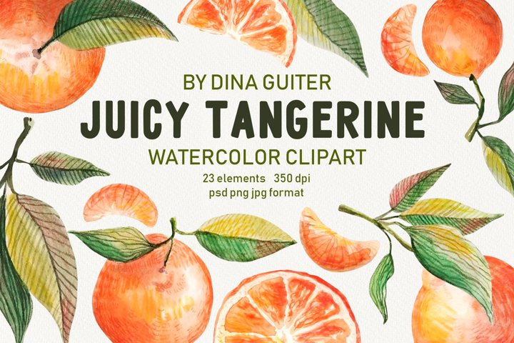 Watercolor Tangerine Clipart Collection