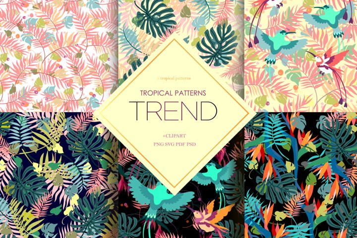 6 Tropical patterns and Clipart, pantone 2020 trend colors