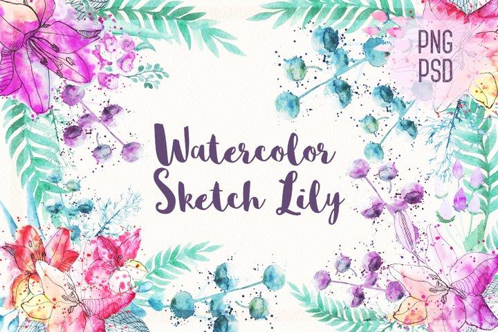Watercolor Sketch Lily