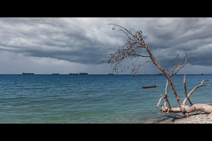 Panorama of seascapes, swings on a fallen tree. 2pcs