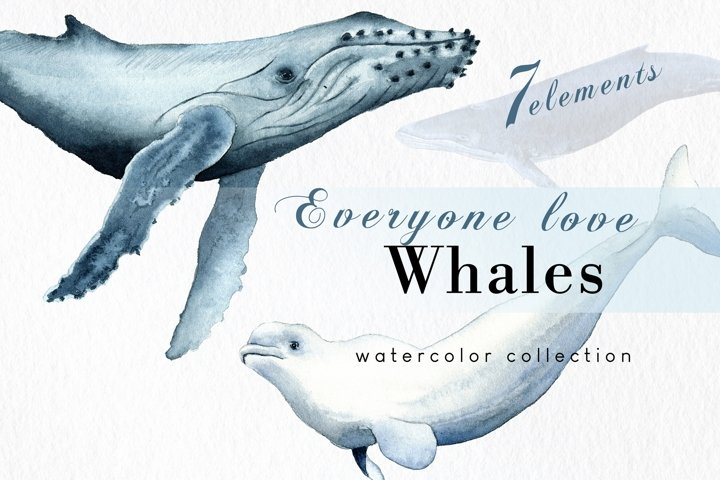 Hand drawn whales clipart set, ocean clip art