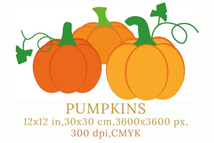 Bundle of bright pumpkins