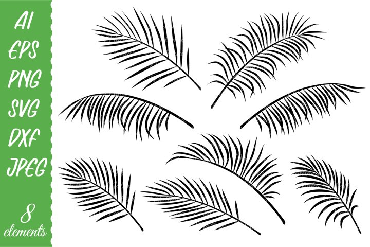 Palm leaves silhouette