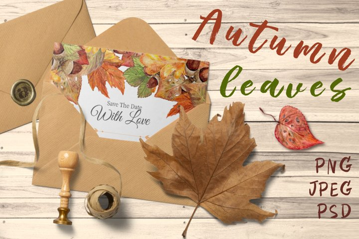 Autumn leaves, watercolor