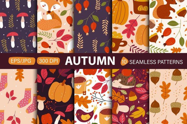 Autumn seamless patterns. Modern fall seasonal decor.