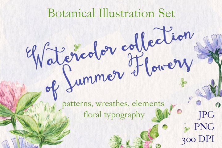 Watercolor collection of summer flowers