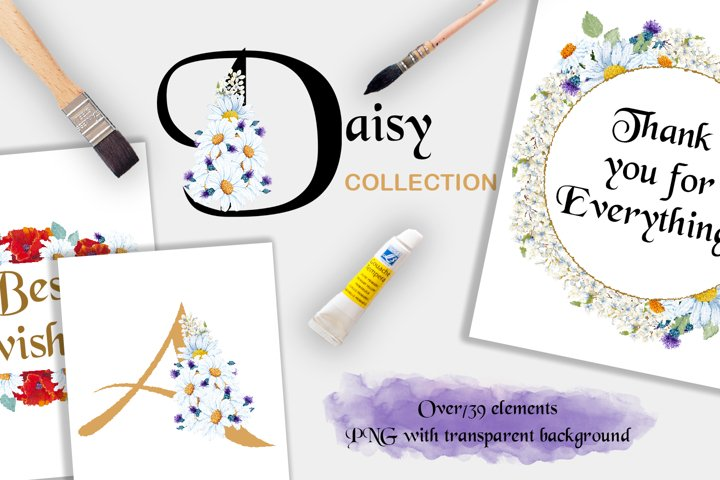 Romantic Daisy Collection
