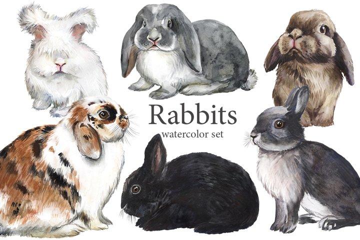 Rabbits watercolor clip art, cute pet clipart, fluffy pets