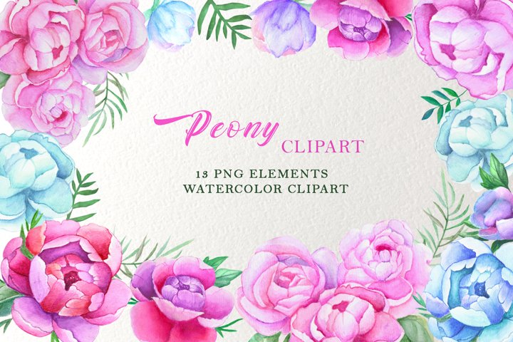 peonies watercolor pink blue purple clipart, Summer Floral