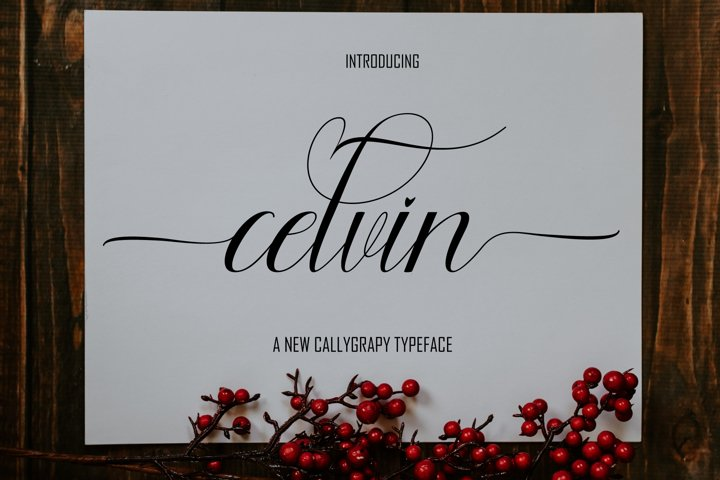 Celvin Font Duo