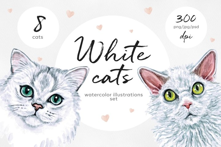 White cat. Watercolor set illustrations. Cute 8 cats.