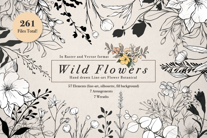WILD FLOWERS Illustration Botanical