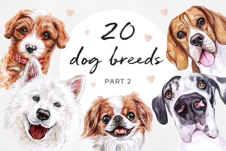 PART 2. Watercolor illustration set DOG breeds. Cute 20 dogs