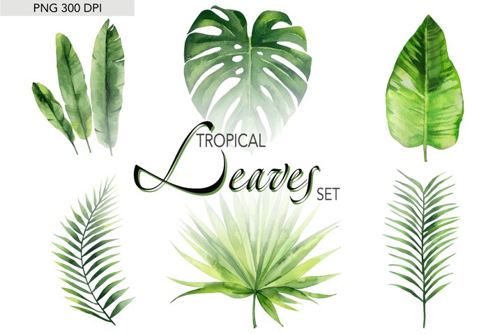 Tropical Clipart Palm Leaves Watercolor png