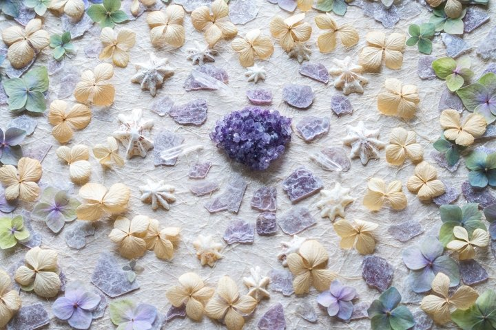 Heart Art. Shells, crystals and dried flowers.