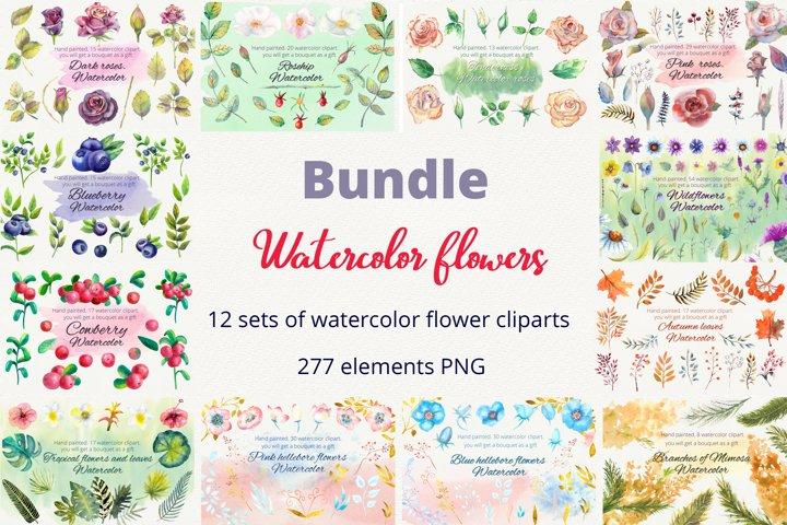 Bundle. Watercolor flowers. Clipart