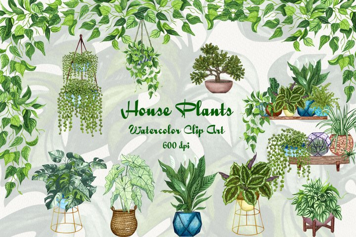 House Plants Watercolor Clip Art 600dpi