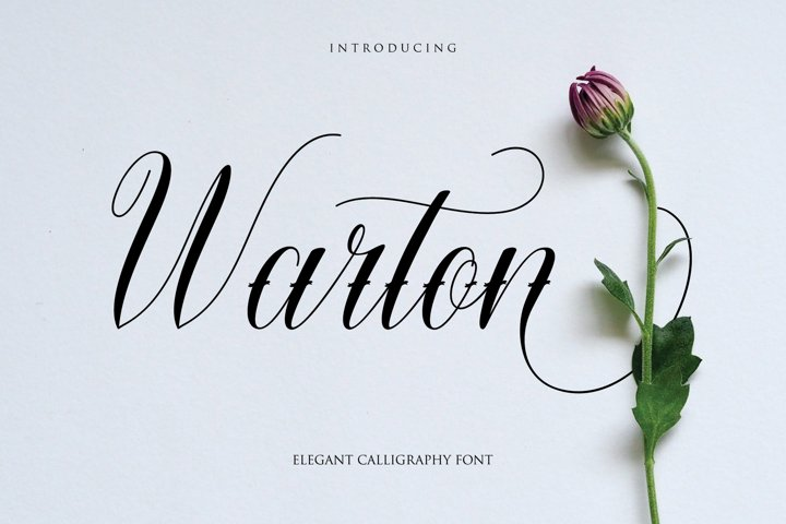 Warton - Elegant Calligraphy font example