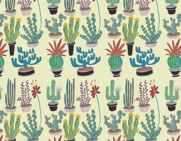 Cacti - light and dark