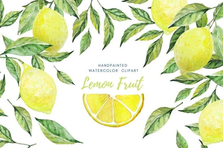 Citrus fruit watercolor set. Lemons and leaves clip art