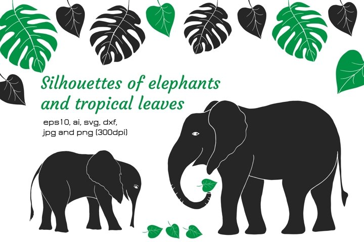 Digital silhouettes of elephants and tropical leaves