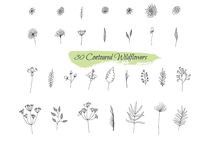 Collection sketches plants