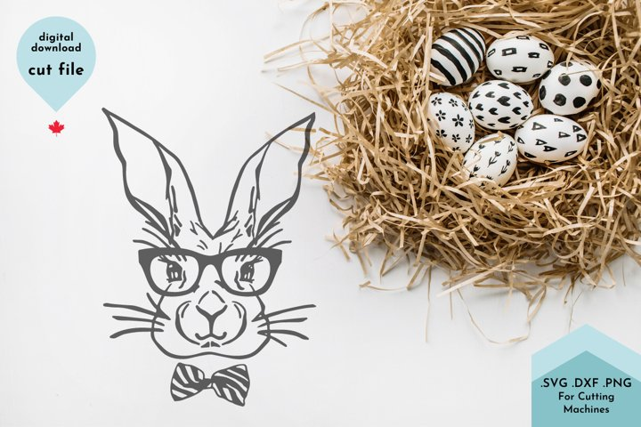 Easter Bunny with glasses svg - - Rabbit Illustration example 2