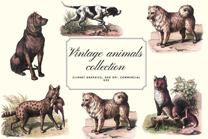 Vintage antique dogs clip art graphics, Retro wolfs graphics
