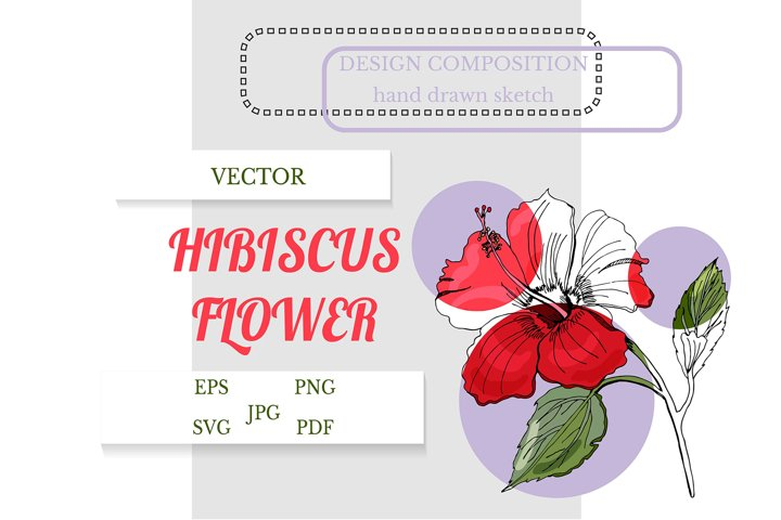 Hand drawn hibiscus flower with leaves. Floral SVG.