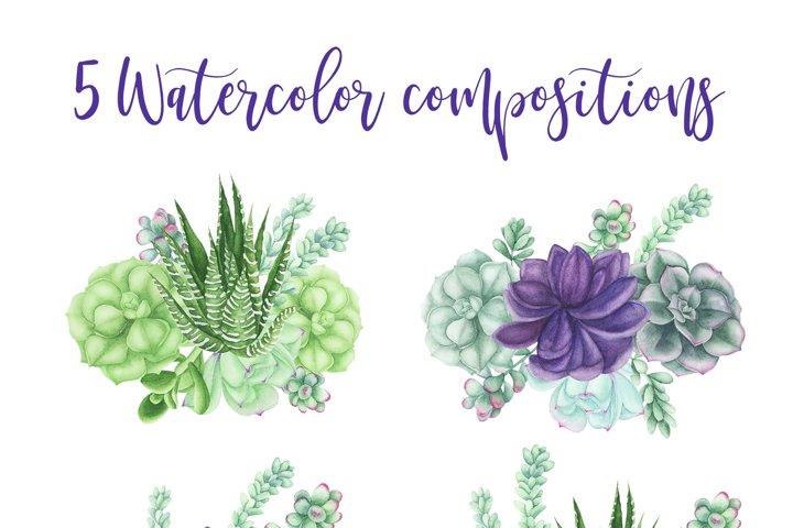 Succulents Bundle example 2