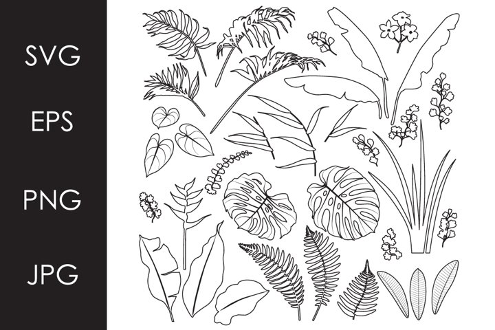 Tropical Leaves and Flowers Outline Set