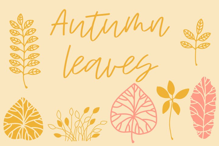 12 Autumn leaves illustrations in png, jpg, eps