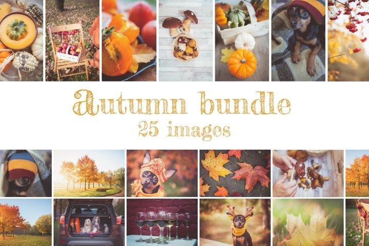 Autumn Bundle 25 Stock photos
