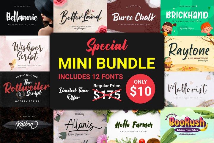Special Mini Bundle