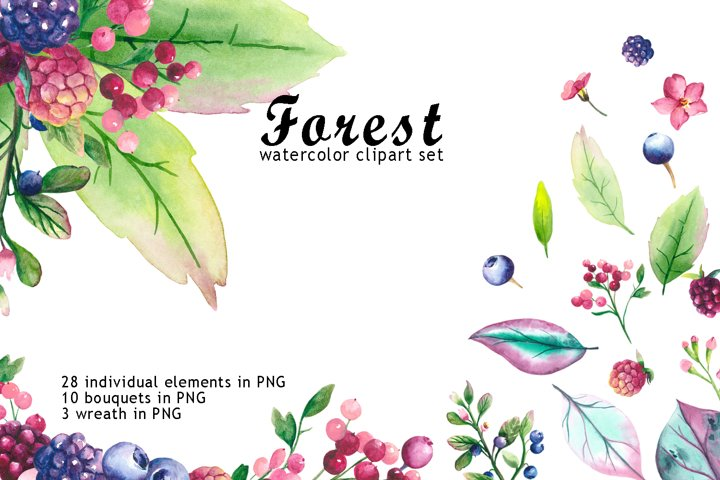 Watercolor forest floral clipart. Bouquets of berries. Frame