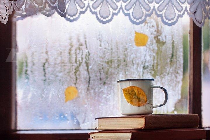 Cup of autumn tea or coffee on rainy window