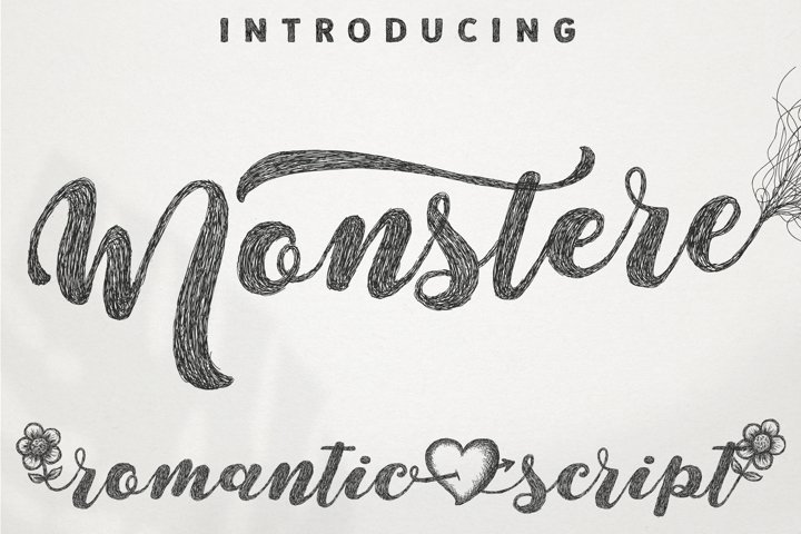 Monstere Script | Sketch Style