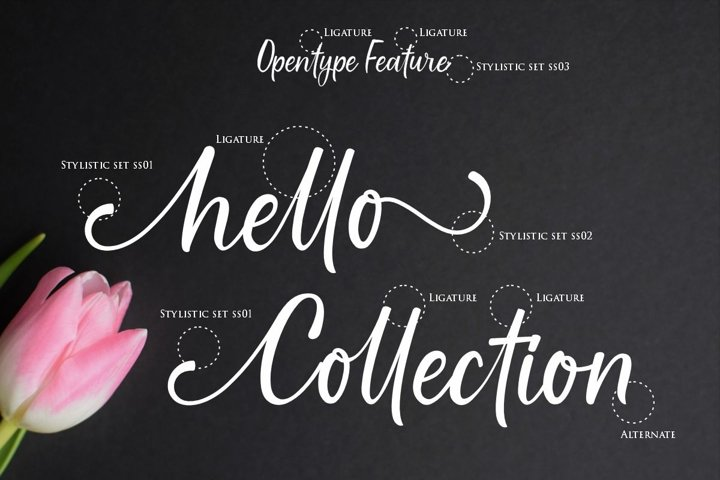 Gallillea | A Modern Calligraphy Font - Free Font Of The Week Design9