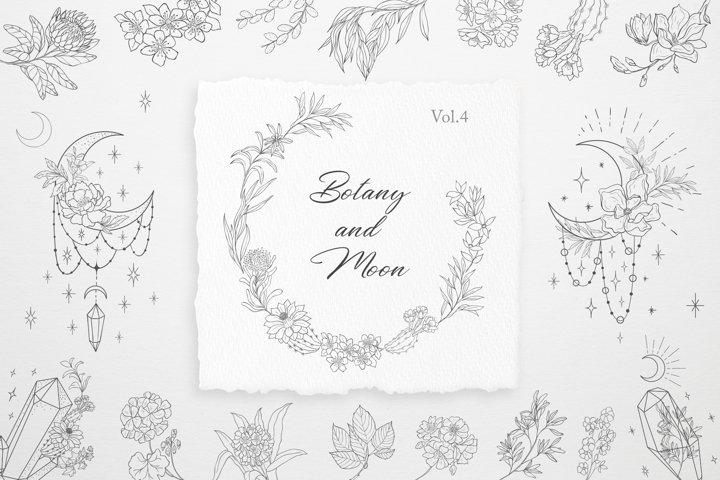Botany and Moon. Hand Drawn Line Art