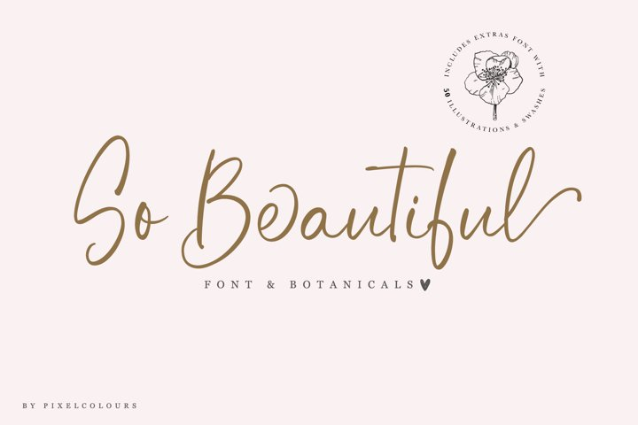 So Beautiful Font and Botanicals