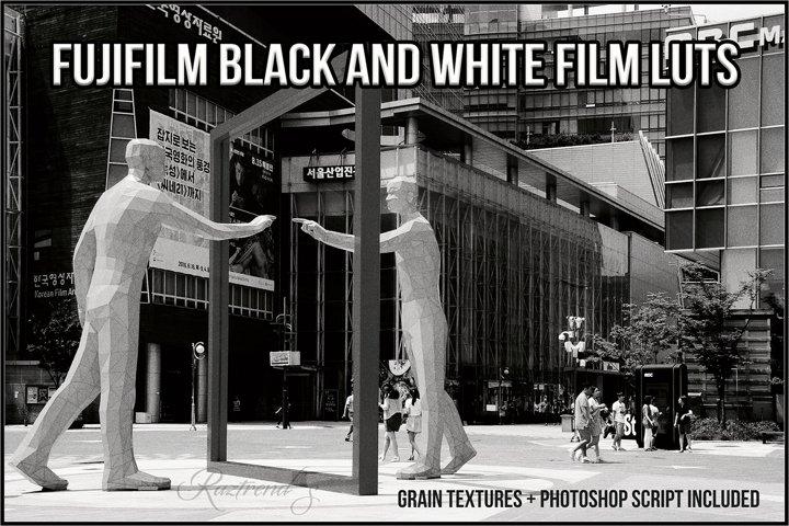 Fujifilm Black and White Film LUTs