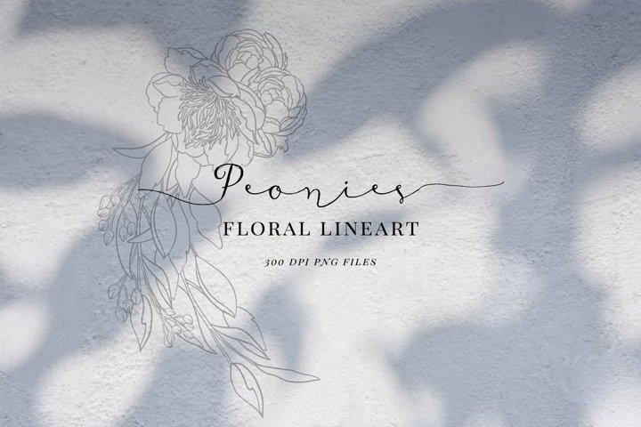 Floral line art, black outline, Peony, png clip art, flowers