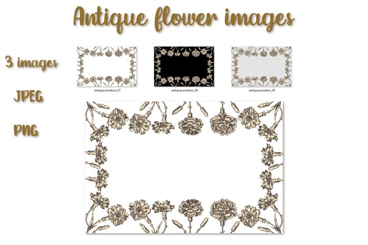 Floral frame from carnations in antique style