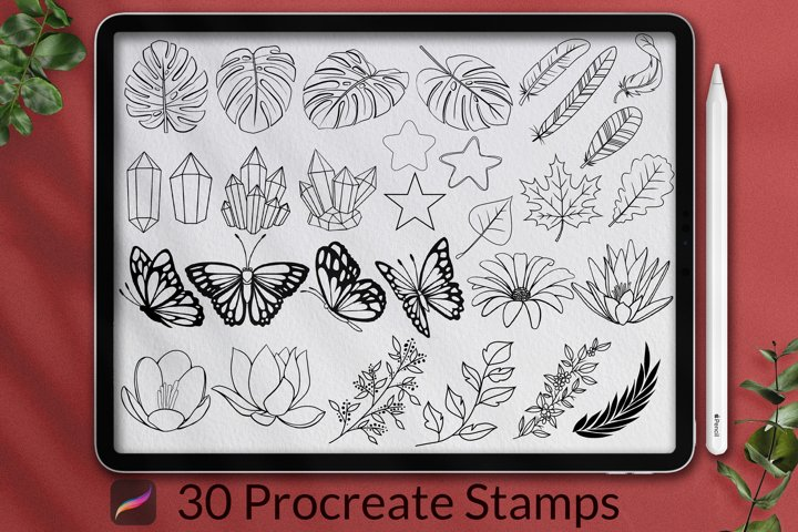 30 Decorative Procreate Stamps