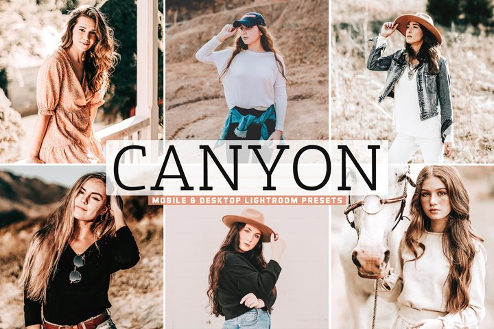 Canyon Mobile & Desktop Lightroom Presets