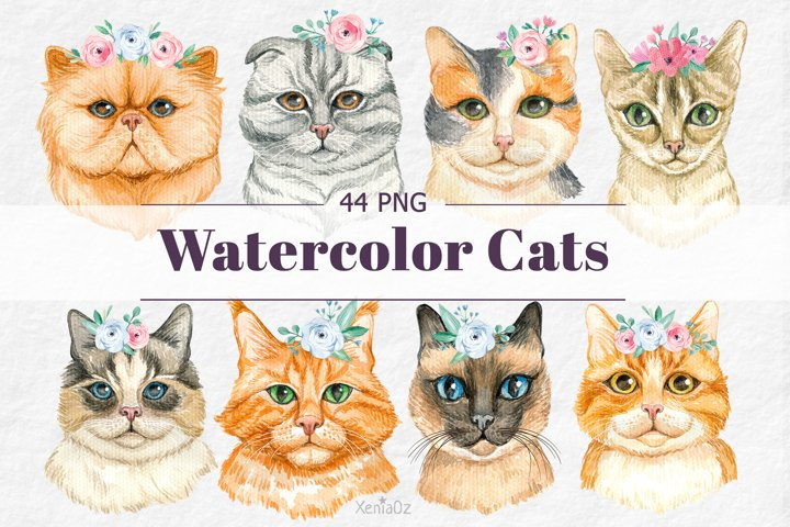Watercolor Cats and Flowers Clipart, Cat Portraits, PNG