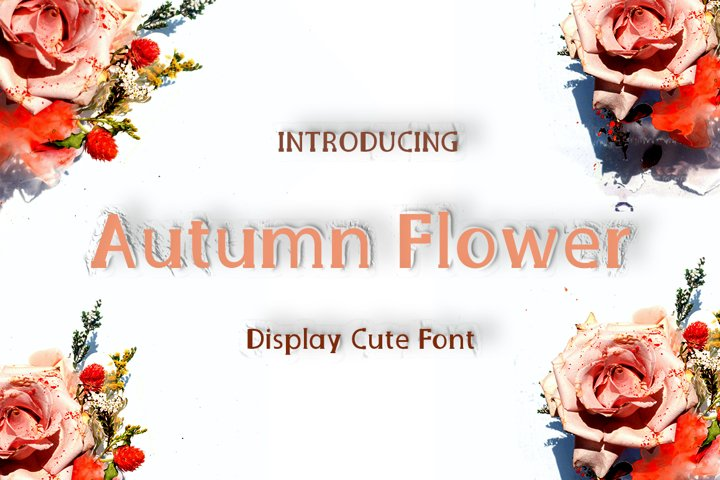 Amsterdam flower | Cute Display Typeface Font